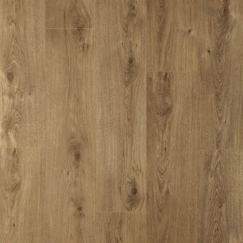 33868_Roble_Beige_Natural_8mm_AC5_Nature_Prof